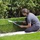 Gartengestaltung mit Formgehölz